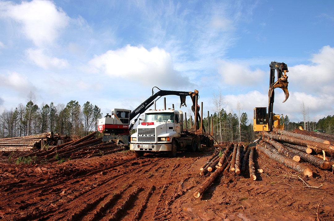 Keyton Logging | Presence of Character