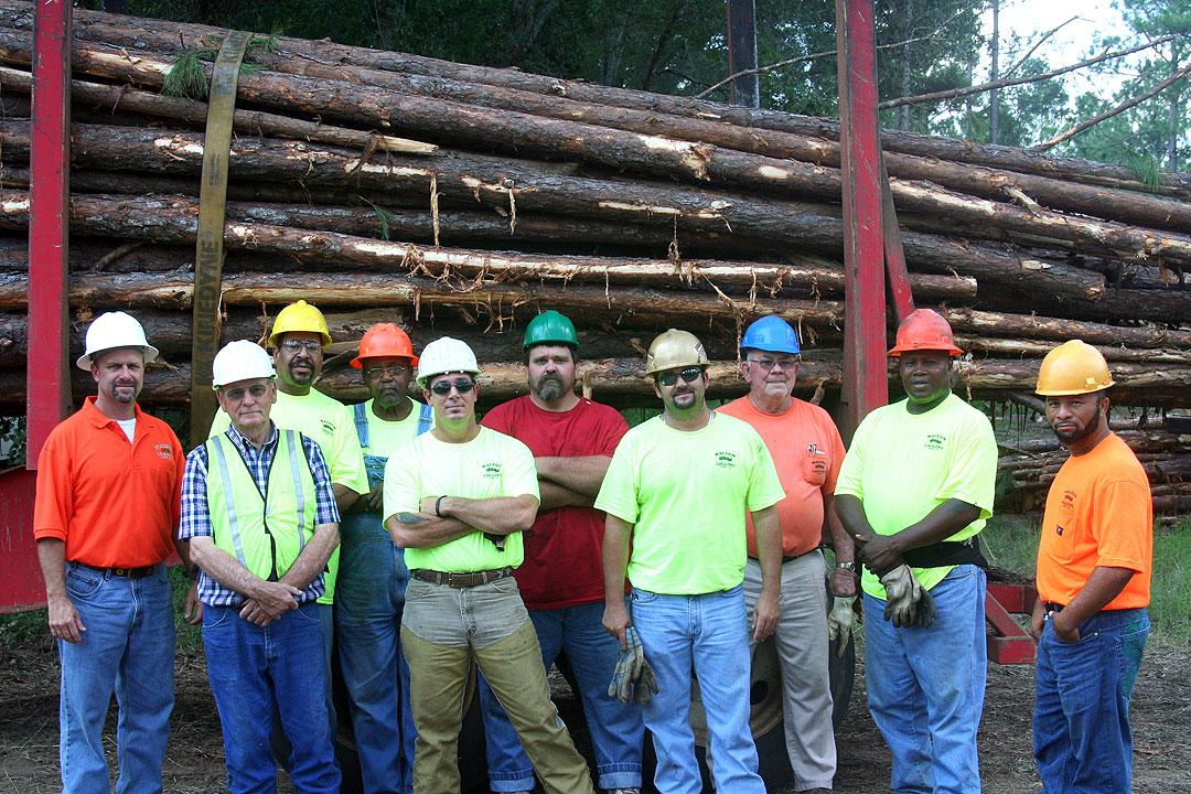 Walden Logging   Good Timing