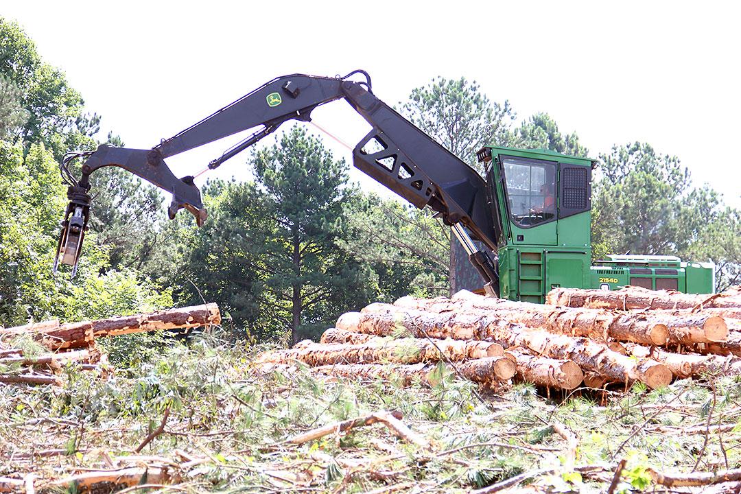TDK Logging   Embracing Change