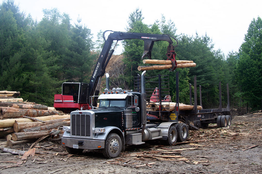 Timberline Logging | Satisfied Customer