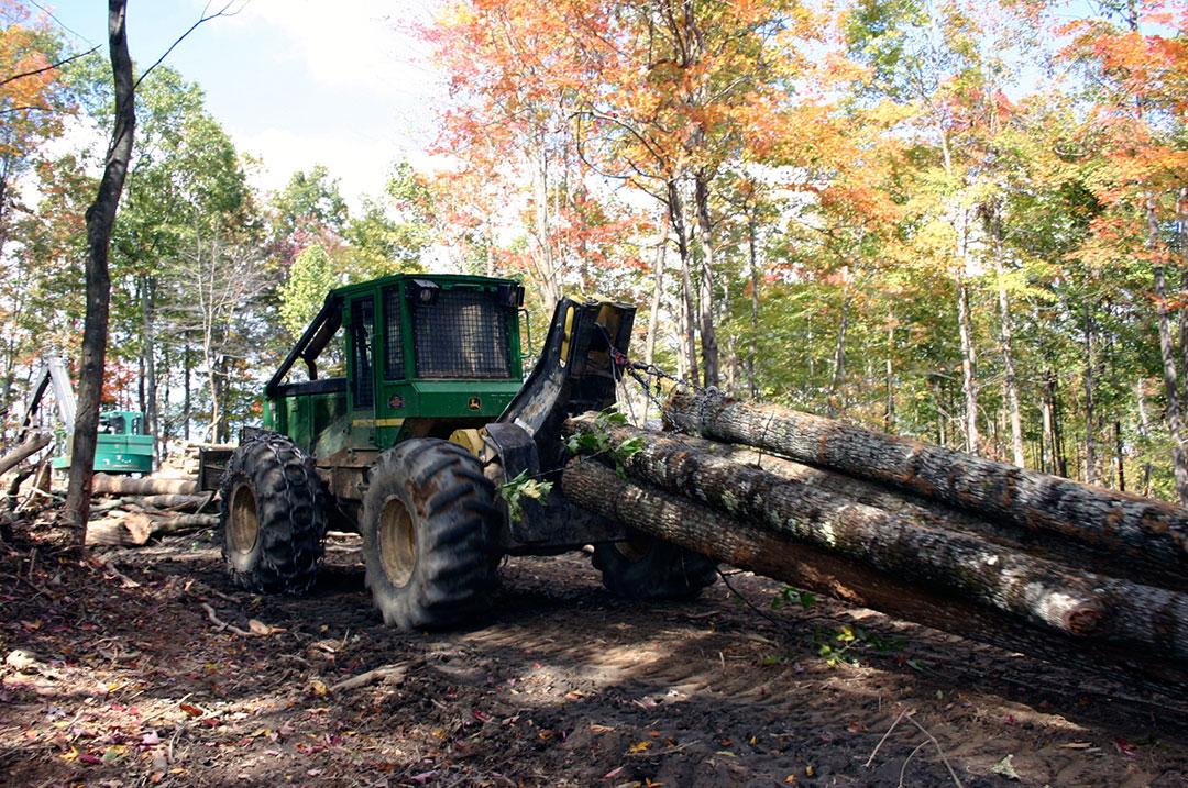 A&M Logging   Major Moves