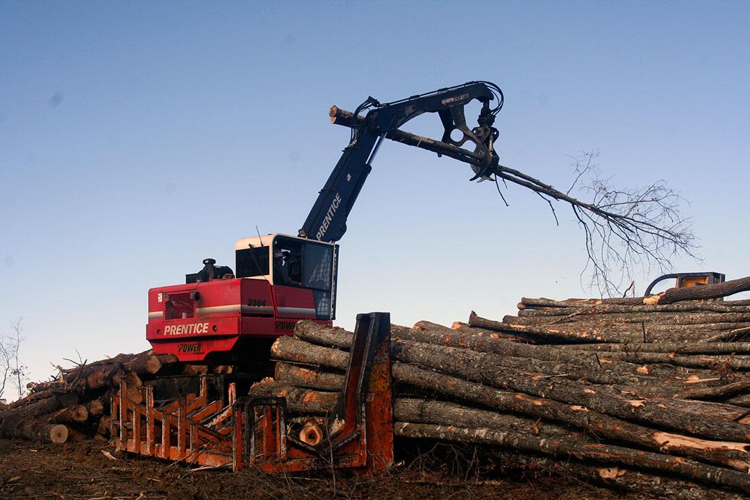 Bill Clarke Logging   Wide Open