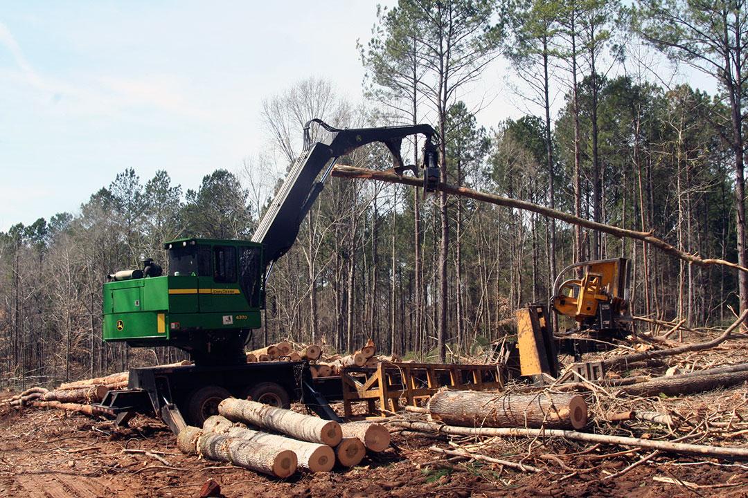 Hawkins Logging | Golden Milestone!