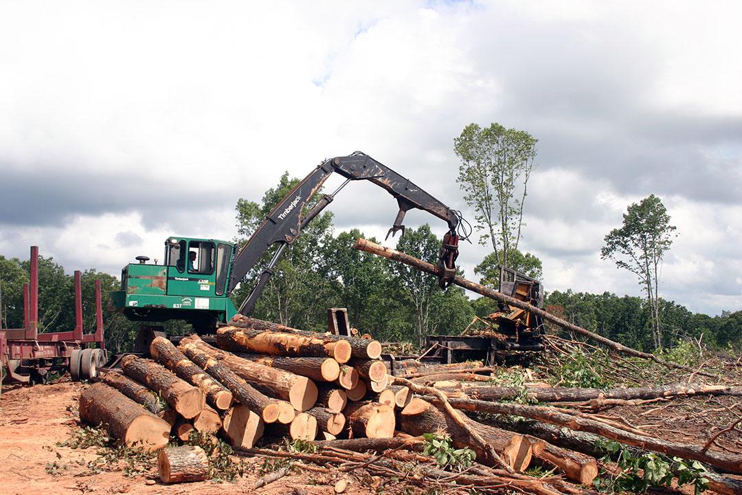 McIntyre Lumber   High Places