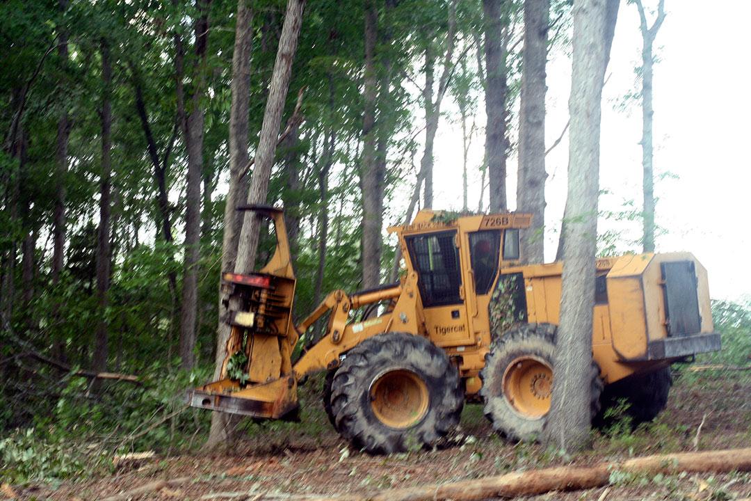 J&J Logging   High Rollers