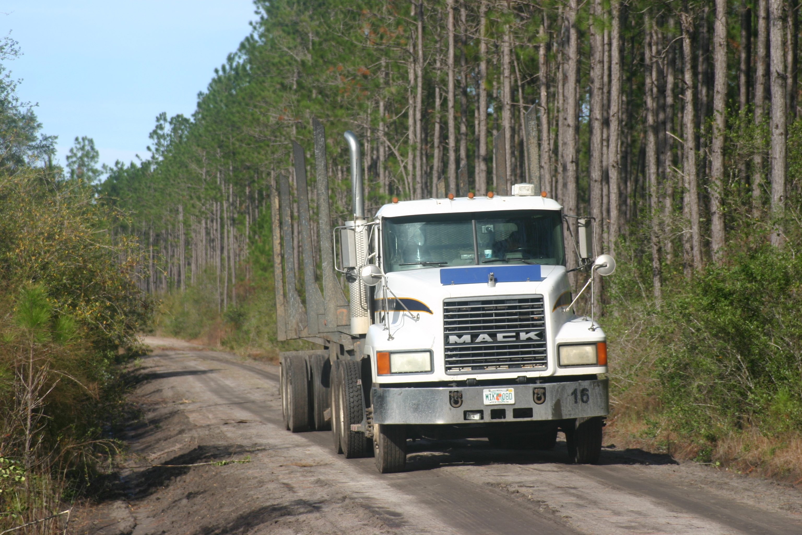 Panhandle Forestry Services | Efficiency Is Key