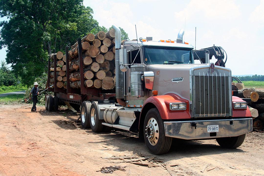 H.J Shelton Logging   All In Together