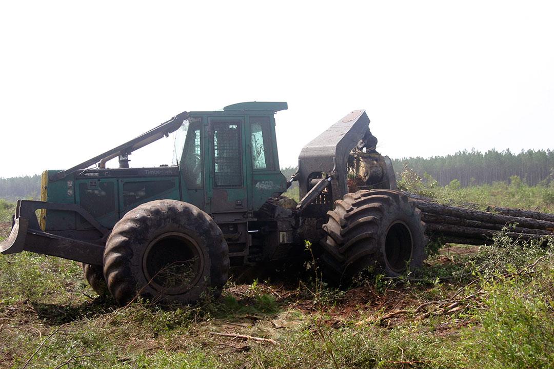Donald Smith Logging Inc.   Moving Ahead