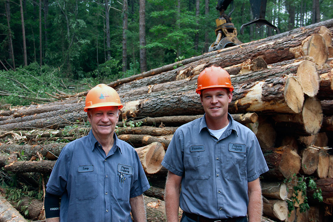 Pilgrim's Logging | Small But Soulful