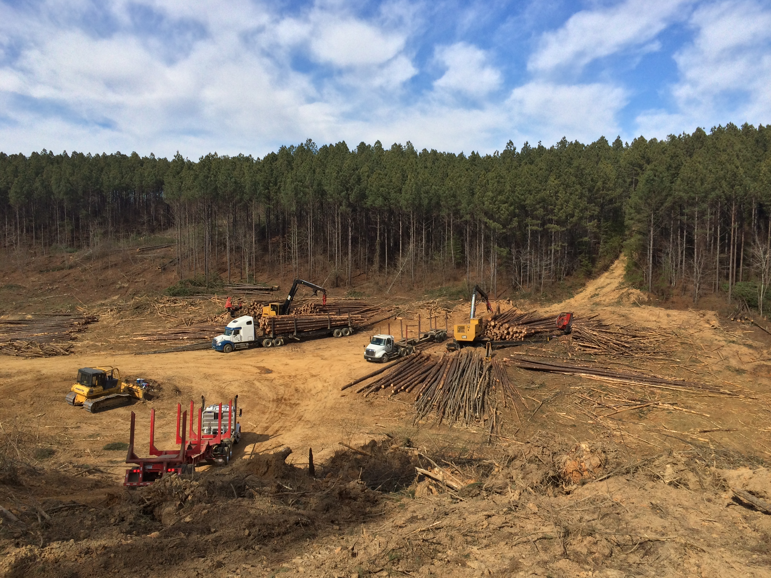 Forest Energies, LLC | Forest Energies' Way
