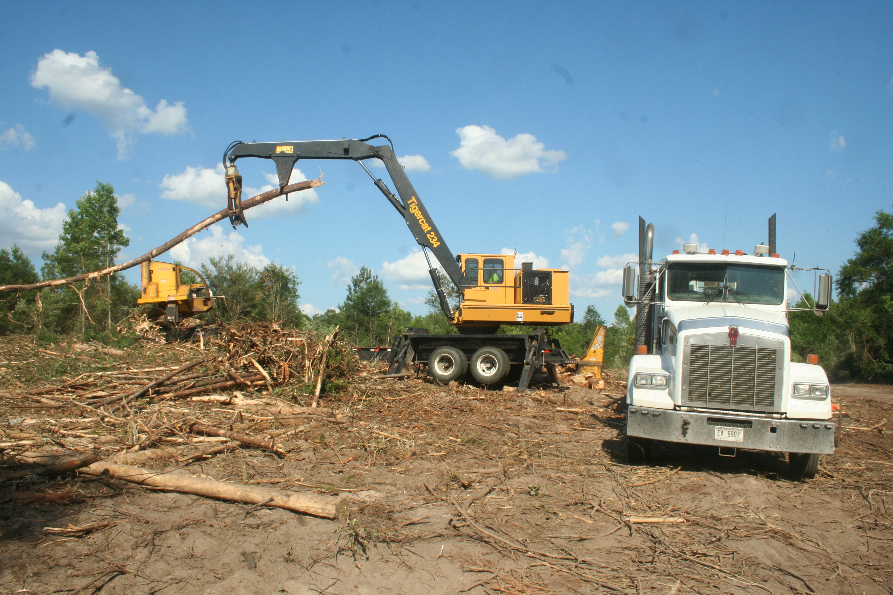 Foster Logging, Inc. | Staying Put