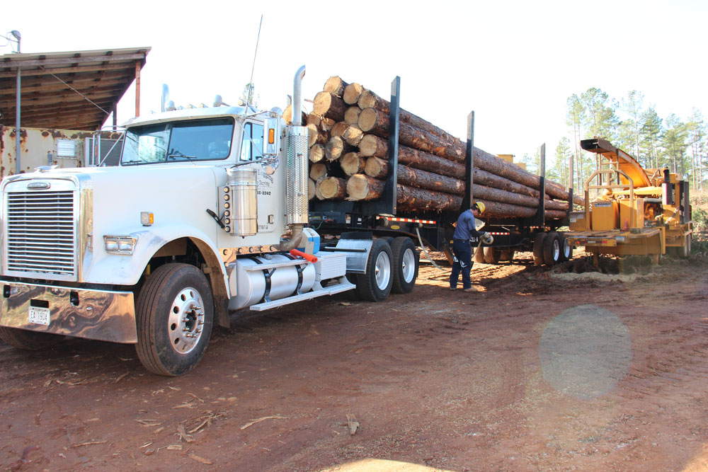 Colvin Logging & Timber Buying | Like Father, Like Son