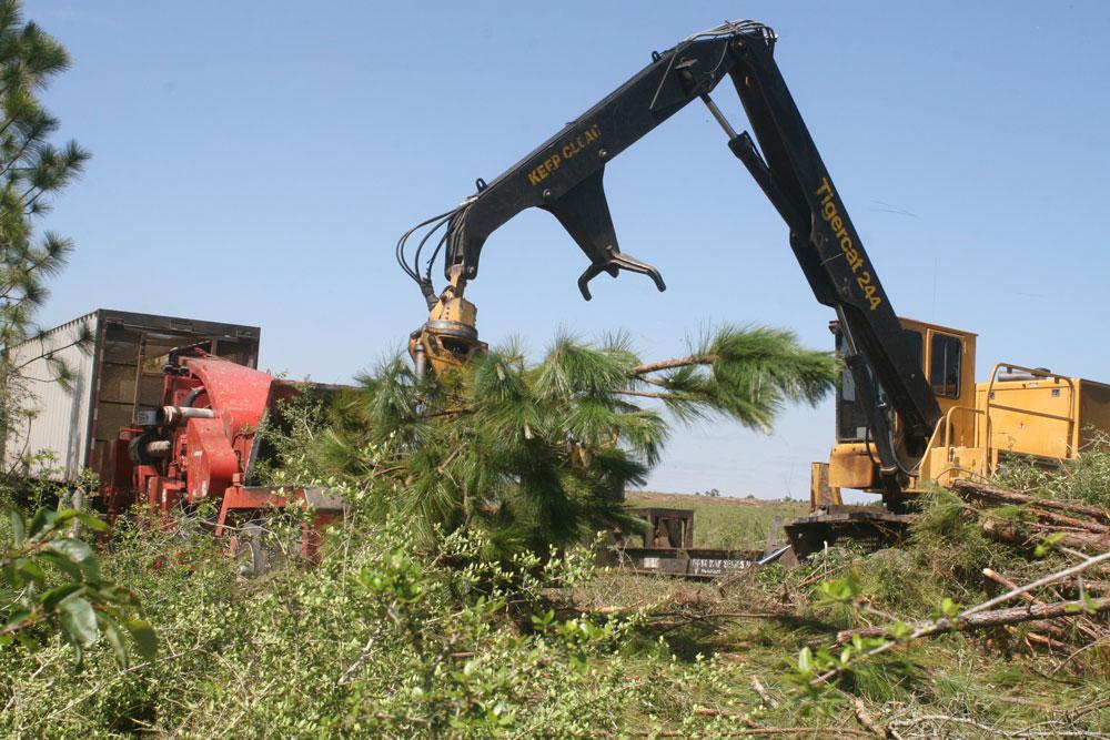 Sapp's Land & Excavating   Good Alignment