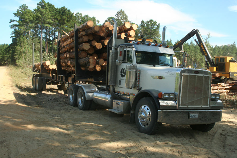 Tant Logging Company | Double Coverage