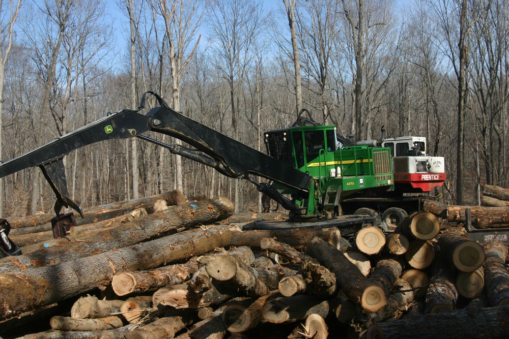 Wade Norris Logging LLC | Stepping Up