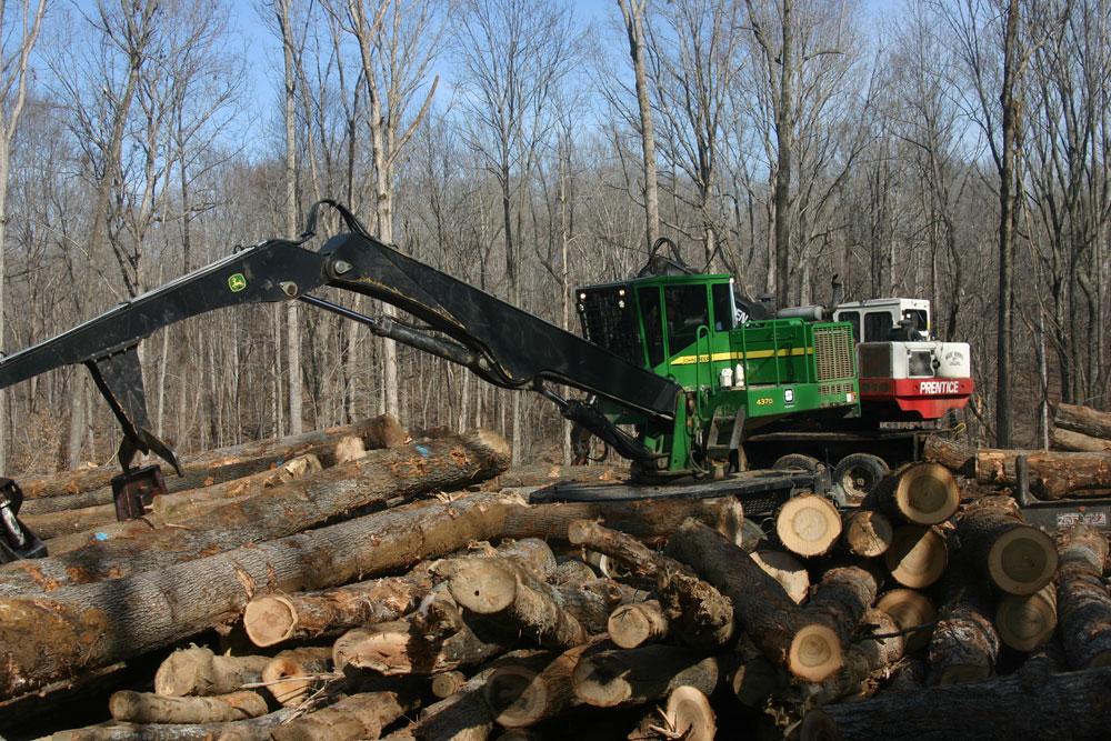 Wade Norris Logging LLC | Stepping Up