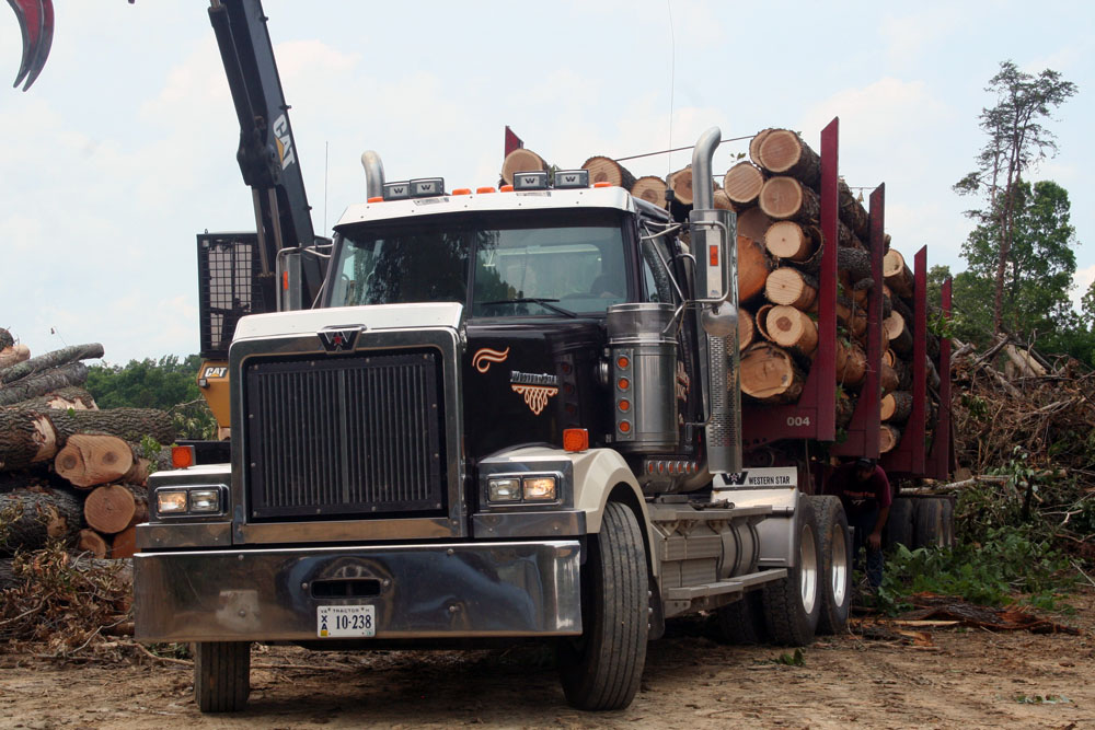 Cottons Alley Trucking | In The DNA