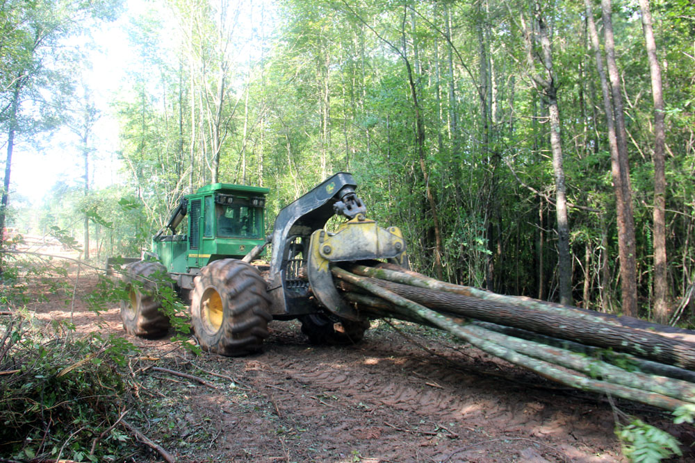 Quality Forest Products   Comeback Trail