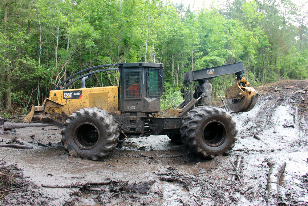 Gladson Logging | Gladson Tackles Variety