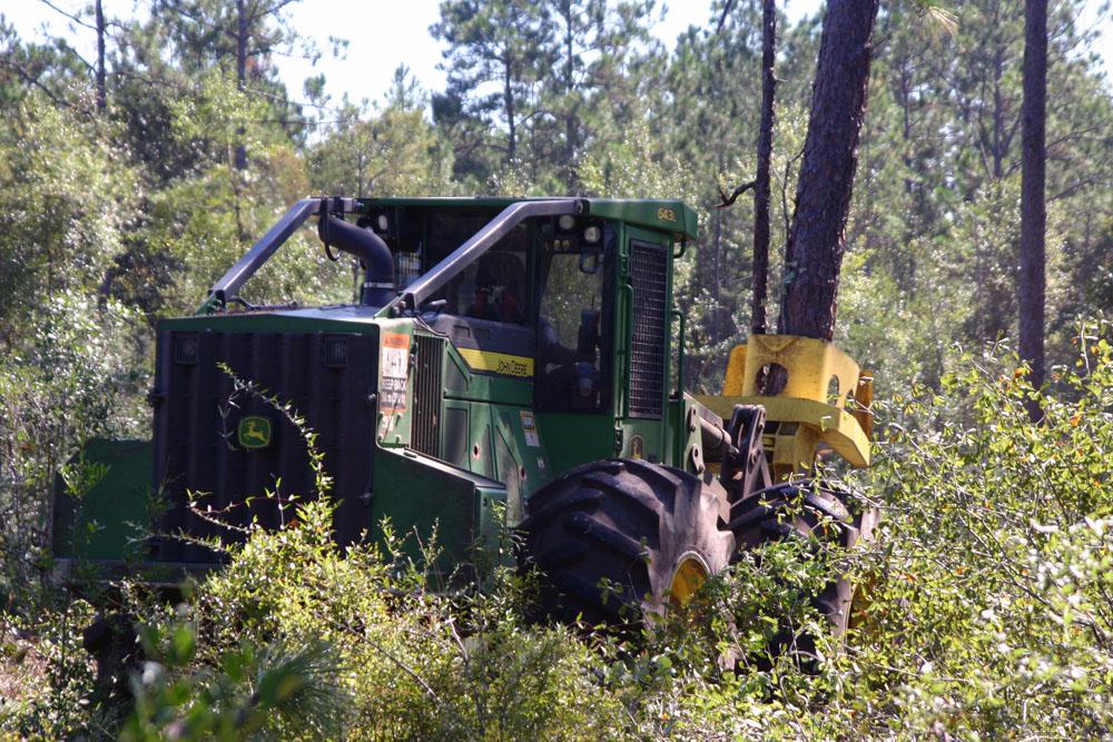 K&B Land and Timber   Positive Impact