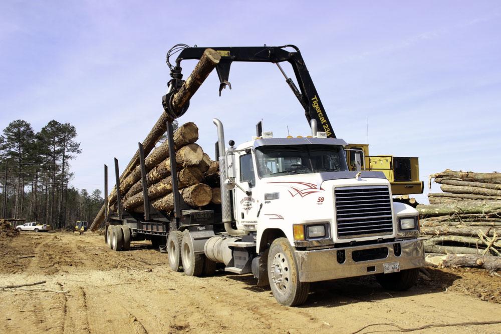 Tim Breland Logging   A Different Path
