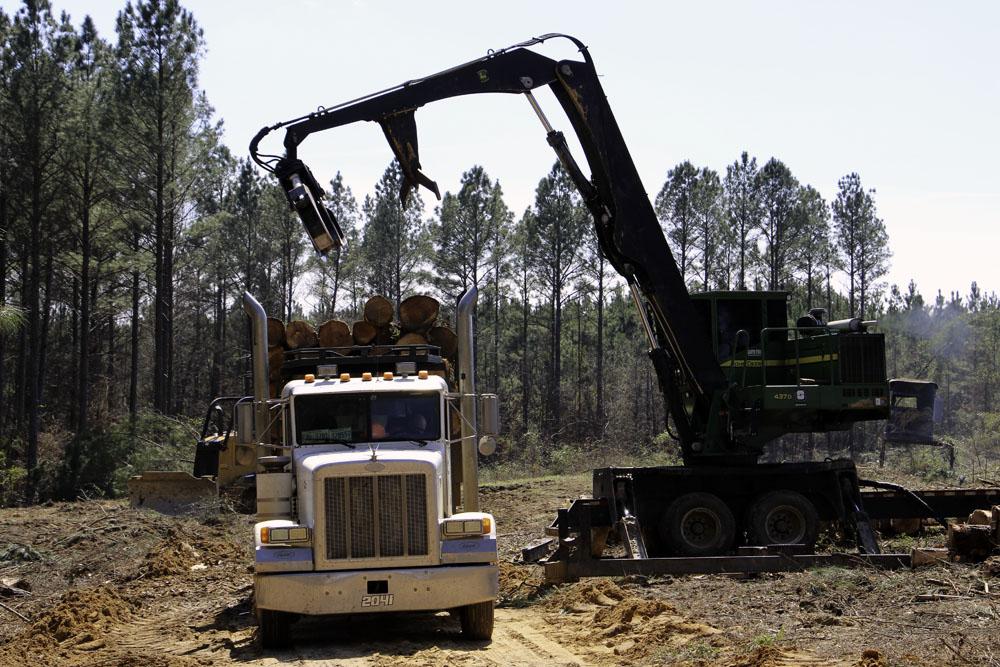 Performance Logging   Focus On Safety