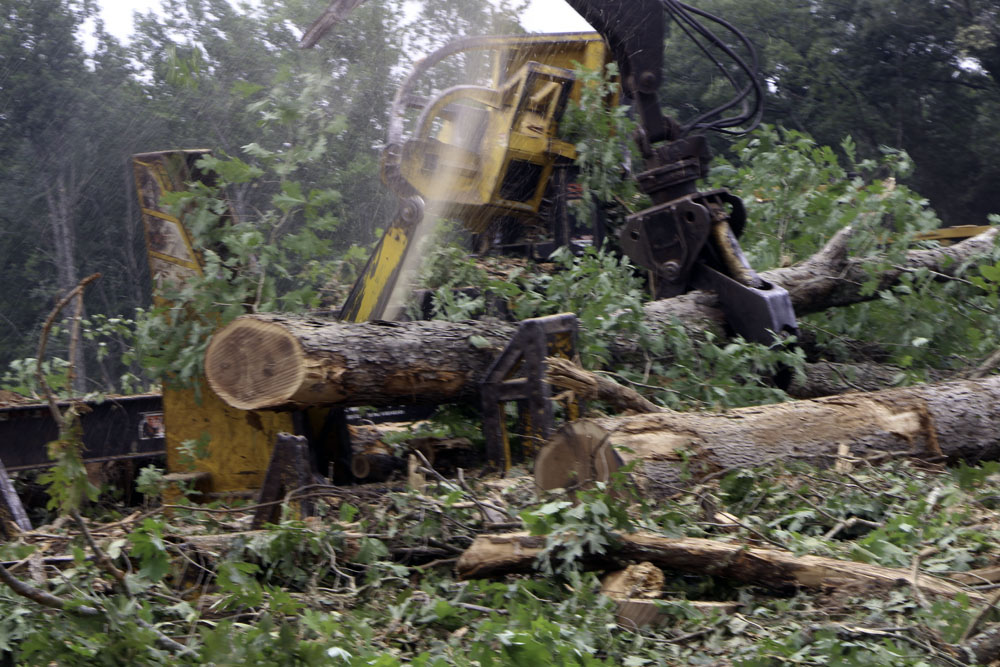 B.L. Nichols Logging, Inc.   Actions Speak Louder