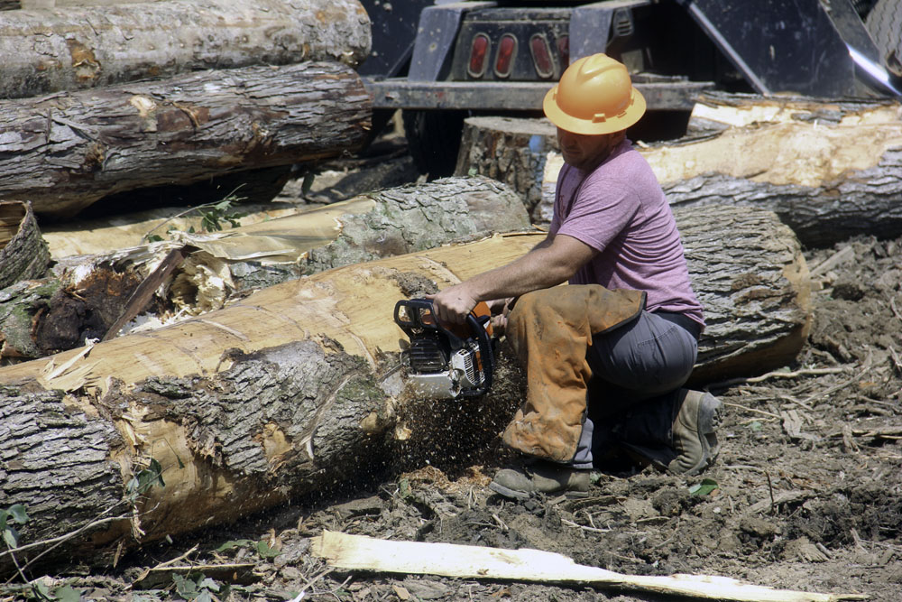 Dewayne Rowe Logging   Steep Terrain