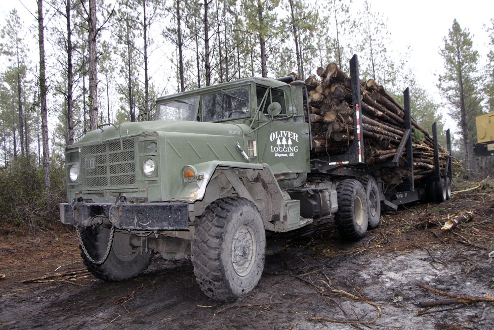 Oliver Logging Company   Growing Opportunities