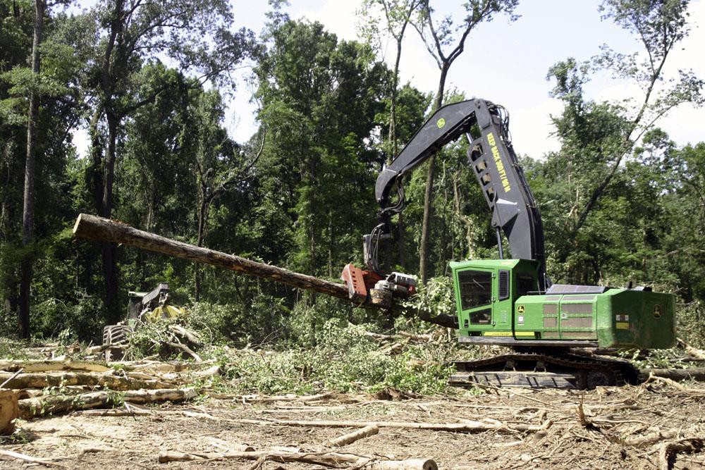 Jason Fly Logging   Green Monster