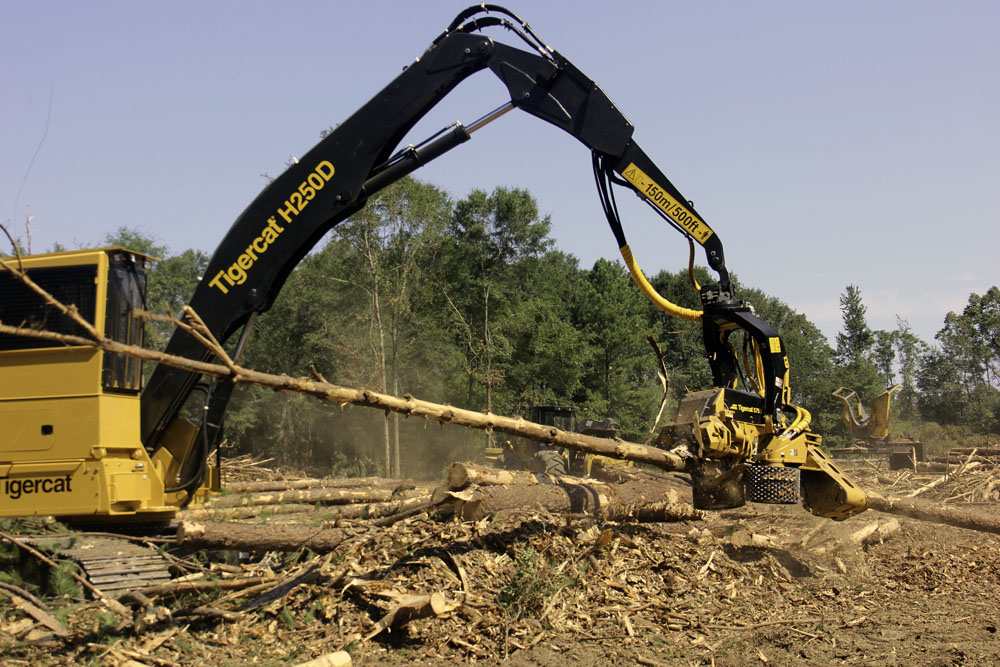 Sanders Logging Company   New 'Process' For Sanders Logging