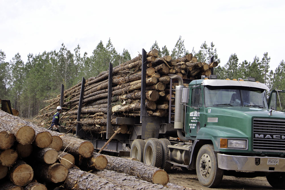 Ideal Logging, Inc. | Over Three Decades