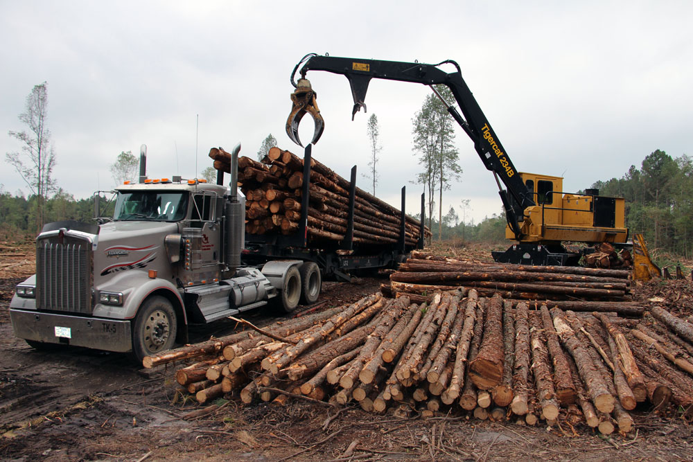 Brett McHenry Logging LLC | Not Stopping