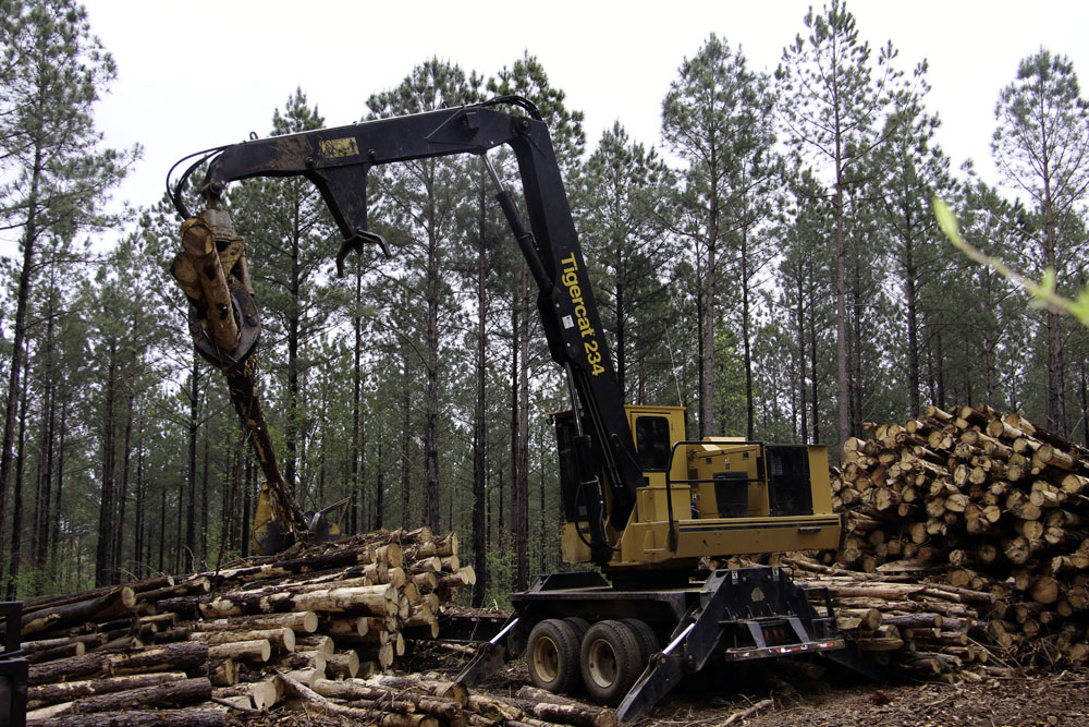 RS Bottoms Logging   Slow, Steady