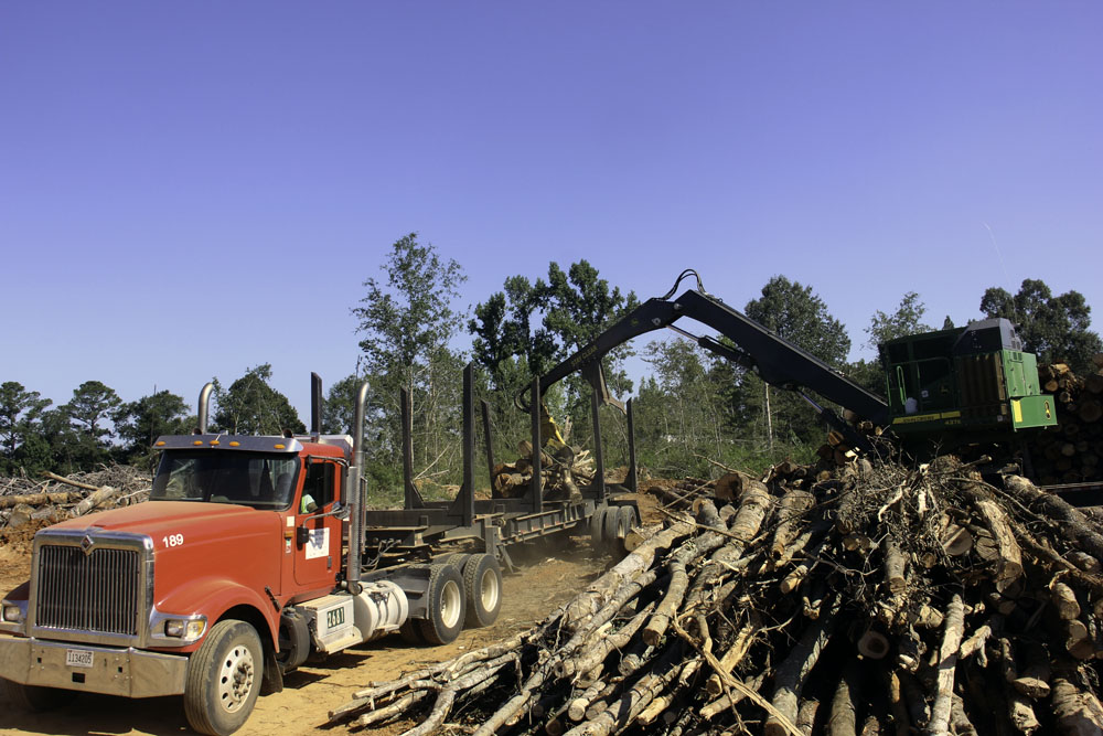 Todd Gray Logging   Renewed Energy