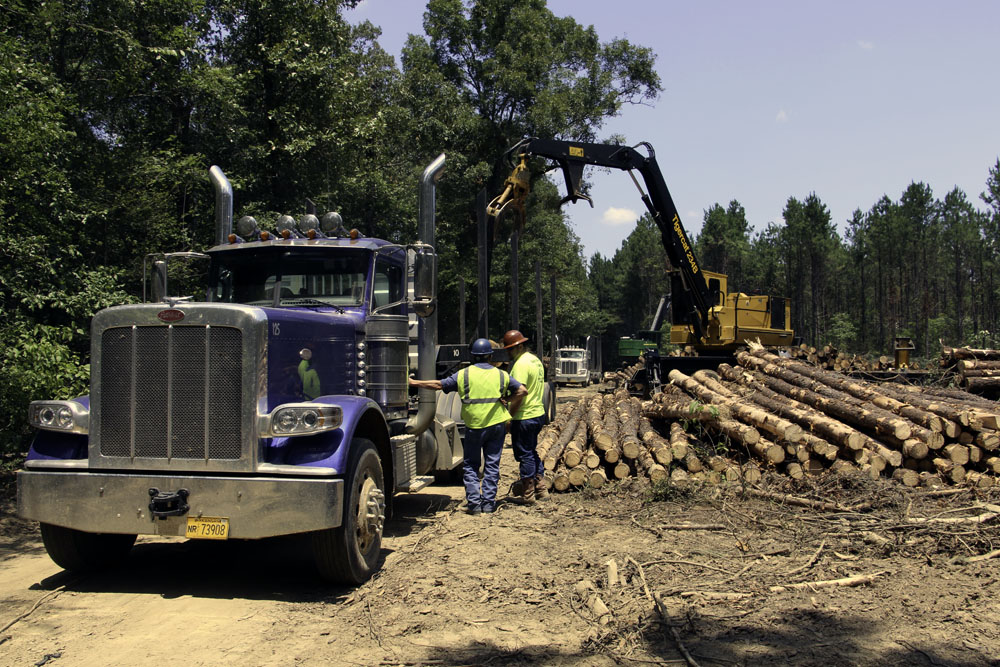 Southern Style Logging, LLC & Bayou Country Trucking, LLC | Their Own Way