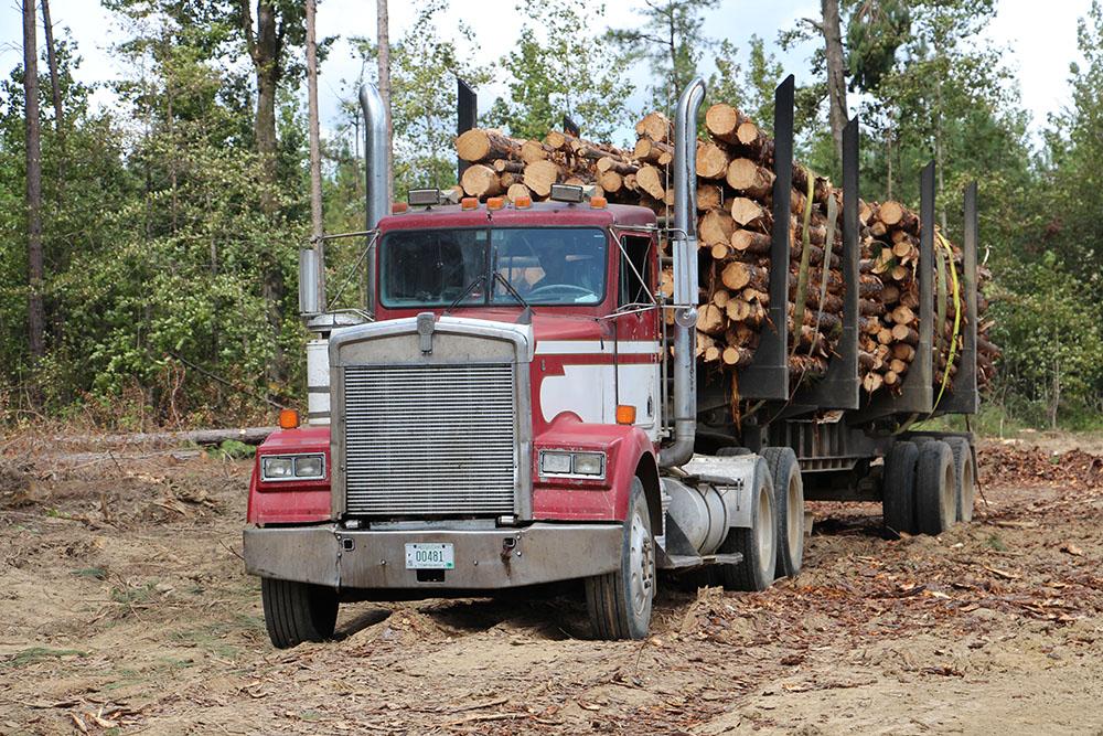 David Breazeale Logging LLC | Hard Start