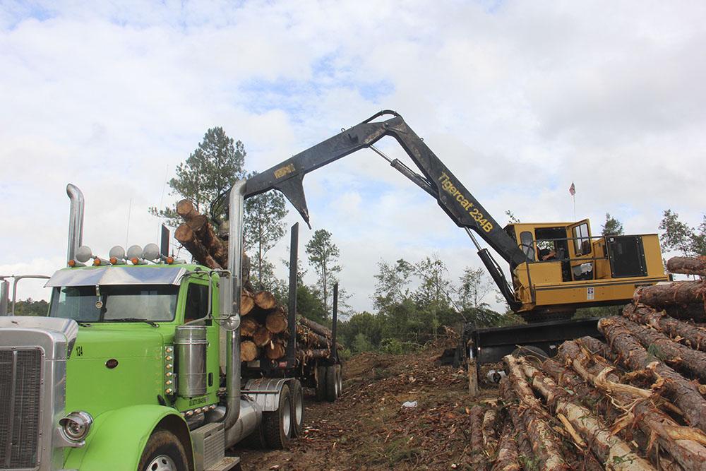 McDonald Timber Company | Still Building