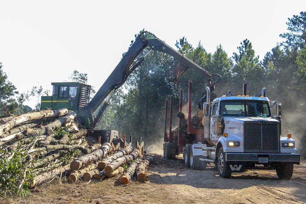 Log Creek | It Takes Three