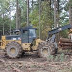 Ray Dotson Logging