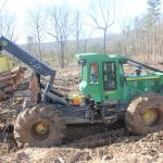 Lovell Logging
