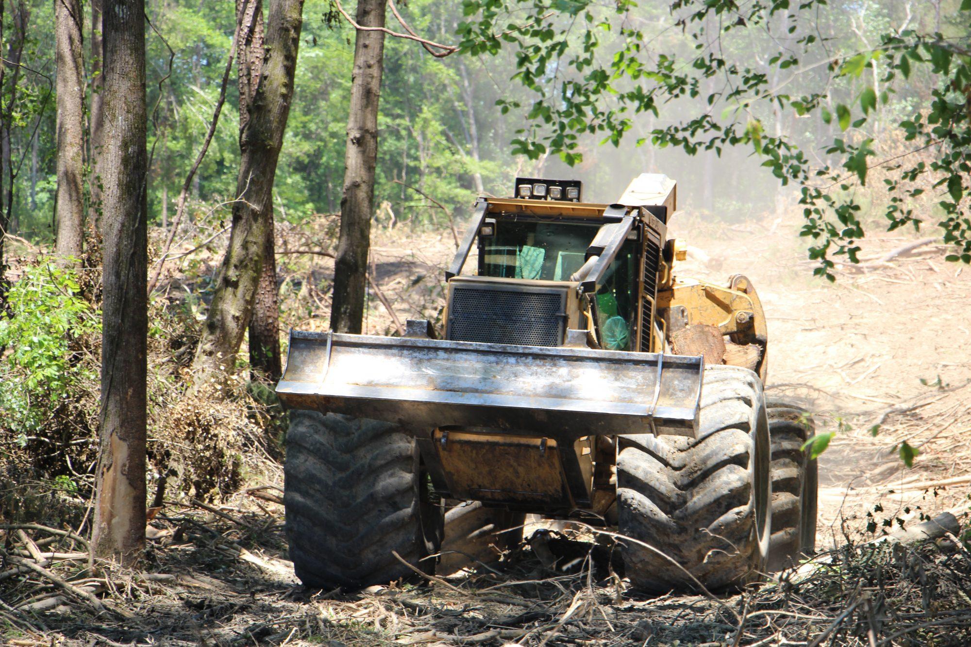 Chambers Logging | Long Partnership