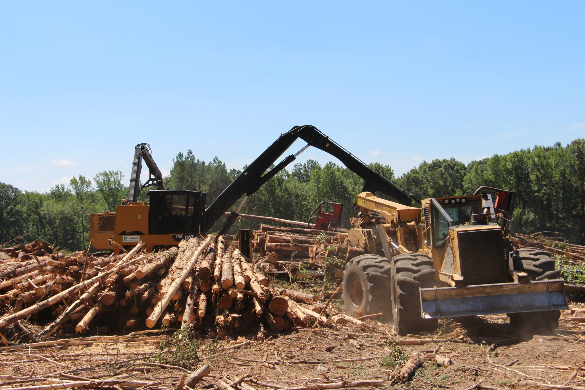 Arcola Logging | North Carolina's Chip Capps Runs The Numbers